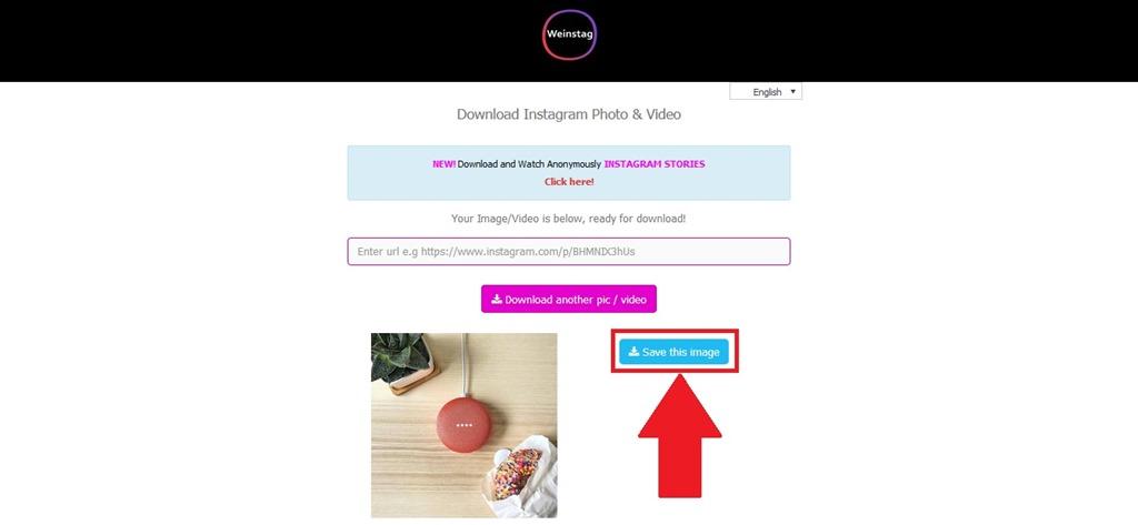 How to Download Instagram Photos | DragonSteelMods